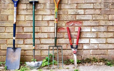 Lawn and Garden Early Spring Checklist
