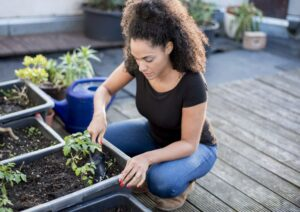 Gardening is something else to do when you're moving from house to another in Middletown, CT